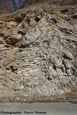 Pli décamétrique complexe dans la nappe des flyschs à helminthoïdes, Ancelle (Hautes Alpes)