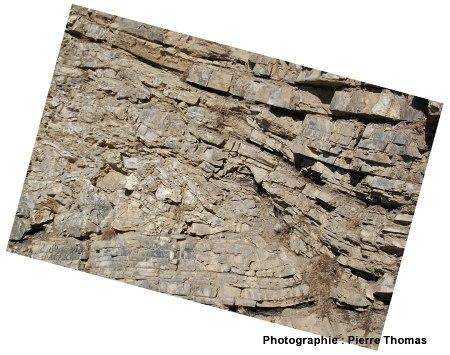 Vue détaillée de la partie inférieure de la faille inverse d'Ancelle (nappe des flyshs à helminthoïdes)