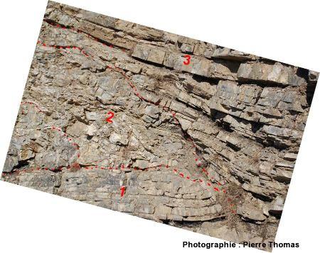 Schéma interprétatif rapproché de la partie inférieure de la faille inverse d'Ancelle (nappe des flyshs à helminthoïdes)