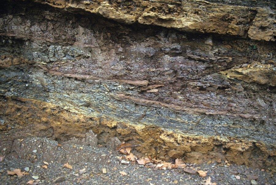 Gros plan sur la faille inverse B dans les terrains triasiques de la région de Lodève (34), centré sur la flèche jaune de l'image 8