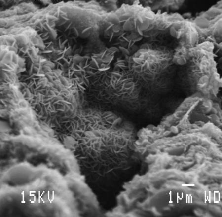 Cœur capitonné d'oxydes de fer lové dans sa matrice de kaolinite