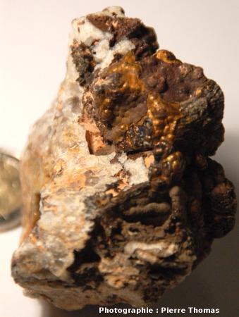 Surface d'hématite mamelonnée partiellement transformée en goethite et limonite, carrière de la Bosse, Échassières (Allier)