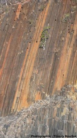 Les orgues basaltiques de l'île Mitsio (Madagascar): falaise prismée