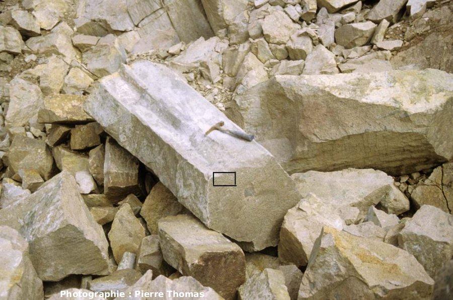 Détail d'un prisme rhyolitique isolé, carrière de Montatuté, Montreuillon (Nièvre)