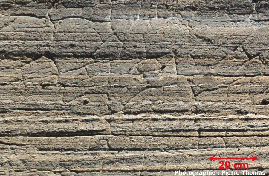 Gros plan sur des fentes de rétraction dans l'encaissant stratifié d'un dyke, Volcan du Capelinhos, Faial, Açores, Portugal