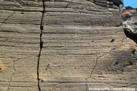 Photographie à échelle intermédiaire sur des fentes de rétraction dans l'encaissant stratifié d'un dyke, Volcan du Capelinhos, Faial, Açores