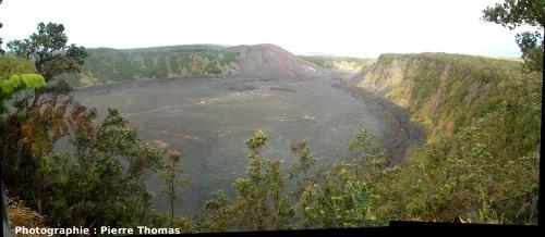 Vue générale du Kilauea Iki Crater, vu du Kilauea Iki Overlook (état en juin 2007)