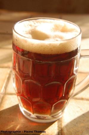 Un verre de bière, surmontée de sa mousse