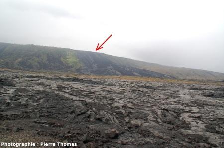 Coulées de lave récentes (1972-1974) au Sud du Kilauea, Hawaii