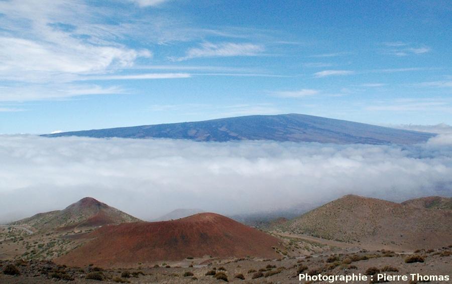 Vue générale du versant Nord du Mauna Loa (4170m) prise du pied du Mauna Kea, Hawaii
