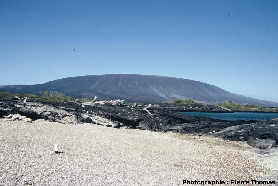 Le volcan « la Cumbre » (1463 m), île de Fernandina, Galapagos
