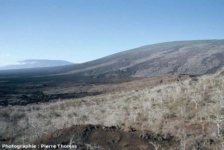 Le volcan Darwin (1280 m) au premier plan et , au fond, le volcan Wolf (1646 m), île Isabela, Galapagos