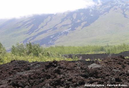 Autre vue des coulées 2004 du flanc Est du Piton de la Fournaise (La Réunion)