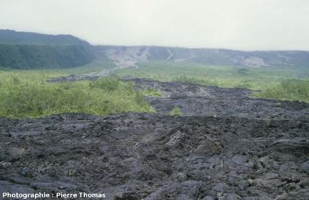 Une coulée, en 1976, envahissant le flanc Est du Piton de la Fournaise (La Réunion)