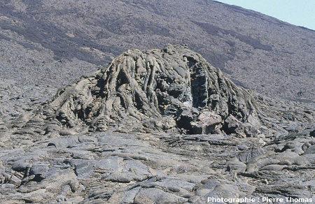 Tumulus de lave avec une morphologie de lave en tripes, Enclos Fouqué, Piton de la Fournaise, île de la Réunion