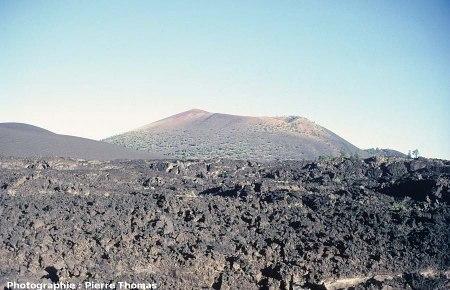 Vue de la coulée du Sunset Crater, Arizona : 2/4
