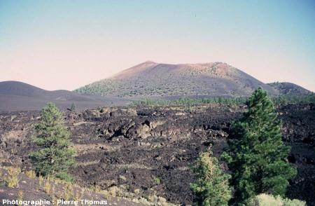 Vue de la coulée du Sunset Crater, Arizona : 3/4