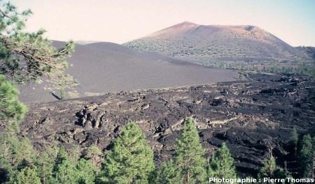 Vue de la coulée du Sunset Crater, Arizona : 4/4