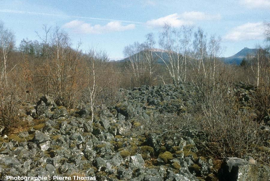 Surface aa de la cheire du Puy de Côme, Chaîne des Puys