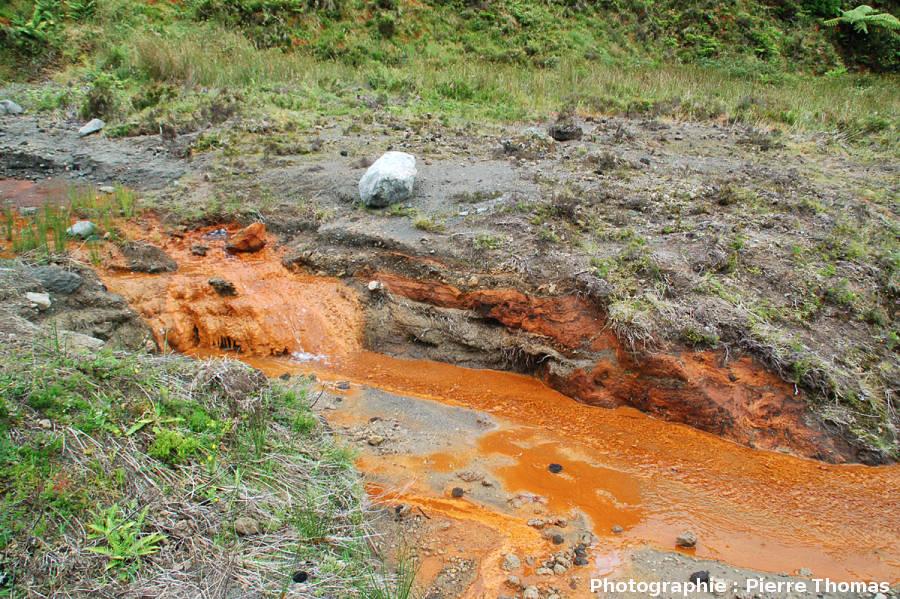 La source ferrugineuse de Lombadas, île de Sao Miguel, Açores
