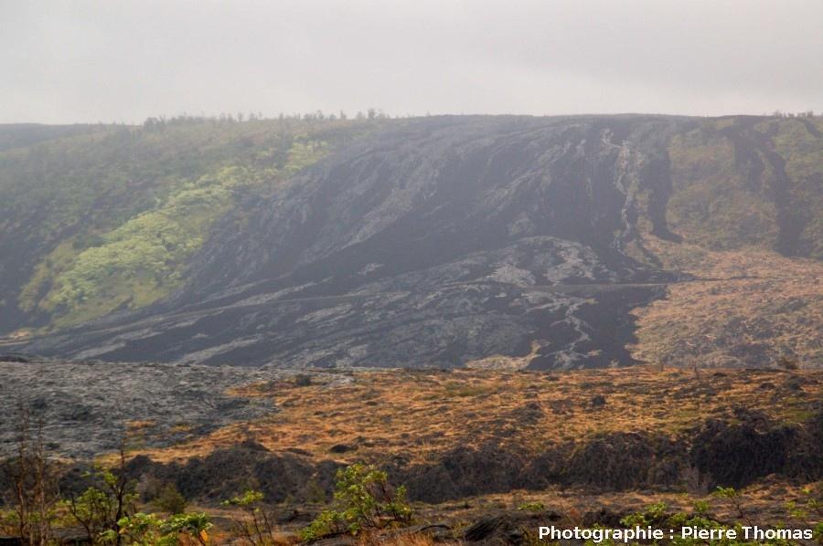Vue générale du secteur d'Holei Pali au Sud du Kilauea, Hawaii