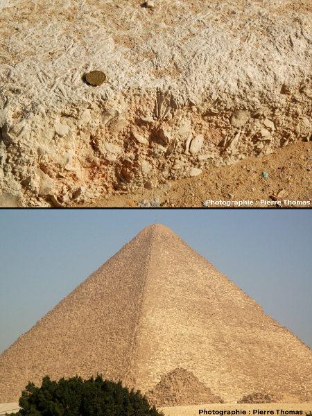 Gros plan sur l'une des pierres de la Grande Pyramide de Khéops, et vue générale (Gizeh, Égypte)