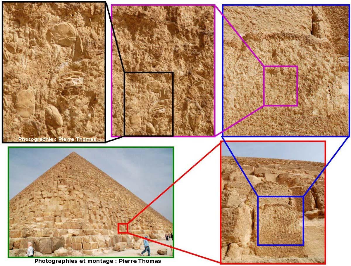 Série avec zoom décroissant localisant l'image 5 sur la Grande Pyramide de Khéops (Gizeh, Égypte)
