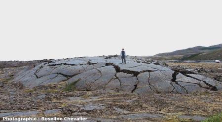 Ride de pression avec nombreuses fractures d'extrados, région de Myvatn, Islande