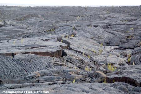 Rides de pression, coulée de 1990-1992 du Pu'u O'o, Hawaii