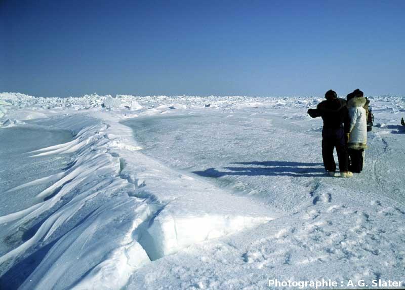 Ride de pression affectant la banquise arctique