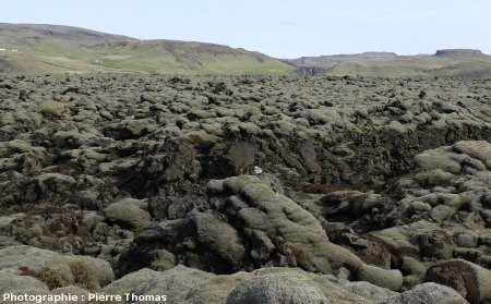 Vue «grand champ» d'une coulée du Laki, Islande