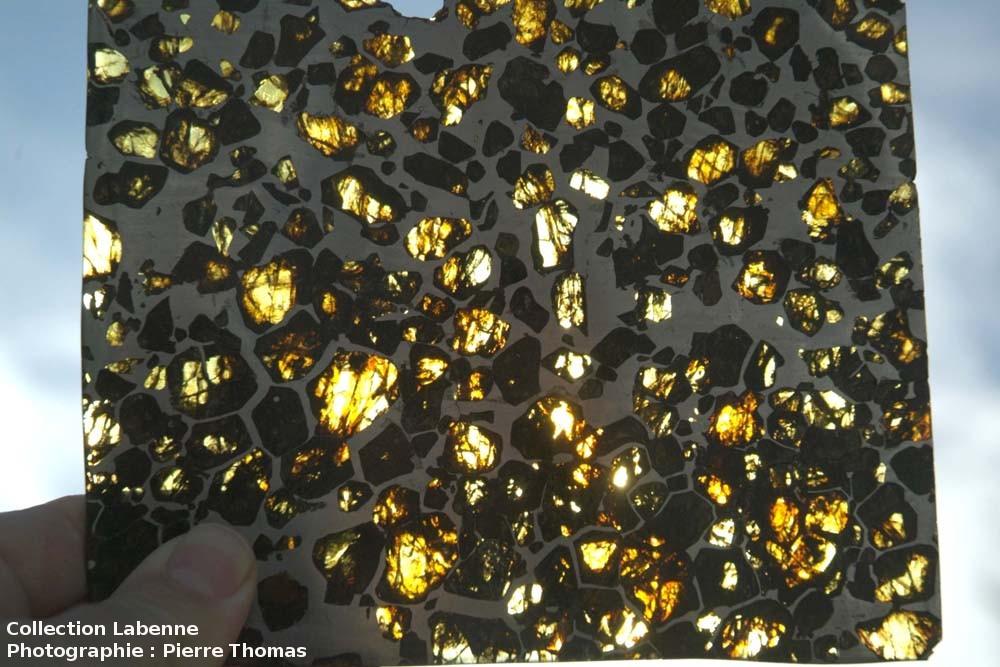 Tranche fine (2 à 3mm) de la pallasite d'Esquel (Argentine) vue par transparence