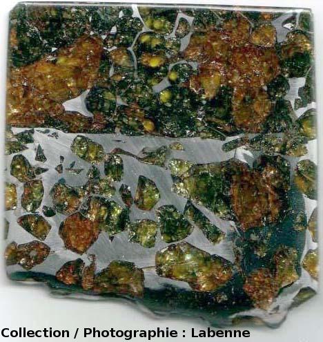 Tranche de la météorite d'Esquel (Argentine) avec 2 zones distinctes