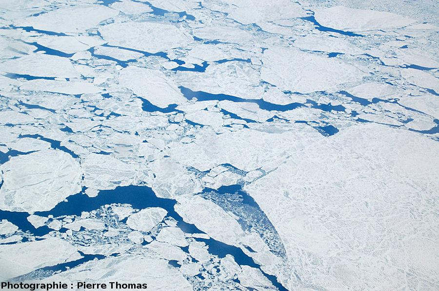 Détail de la banquise en cours de dislocation, détroit de Davis, entre le Groenland et l'île de Baffin (Canada)