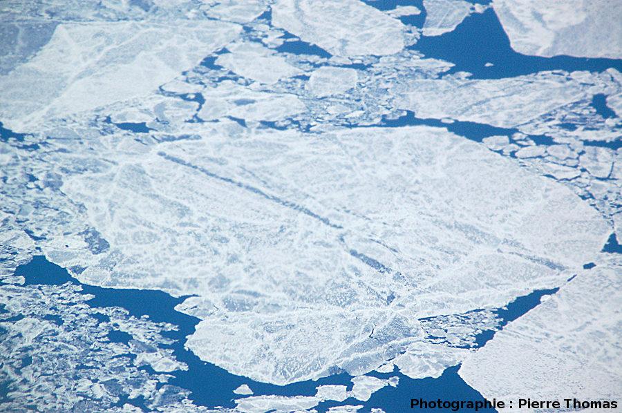 Zoom sur la banquise en cours de dislocation, détroit de Davis, entre le Groenland et l'île de Baffin (Canada)
