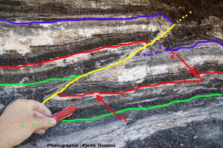 Schéma interprétatif: mini pli-faille / faille inverse dans les lignites de Minerve – La Caunette (Hérault)