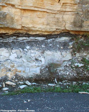 La même couche de lignite à l'Est du virage localisé à 300m de Minerve sur la D10 en direction de La Caunette (Hérault)