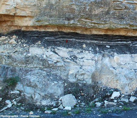 Structures extensives dans les lignites de Minerve – La Caunette (Hérault)