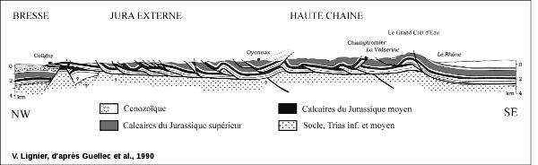 Coupe géologique équilibrée, le long du profil ECORS au Sud du massif du Jura