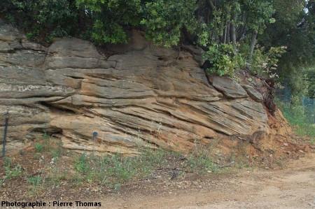 Stratifications obliques dans les grès du Cuisien (e4b) de La Caunette, Hérault