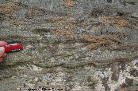Stratifications obliques dans les grès du Cuisien (e4b) de La Caunette, Hérault, détail.