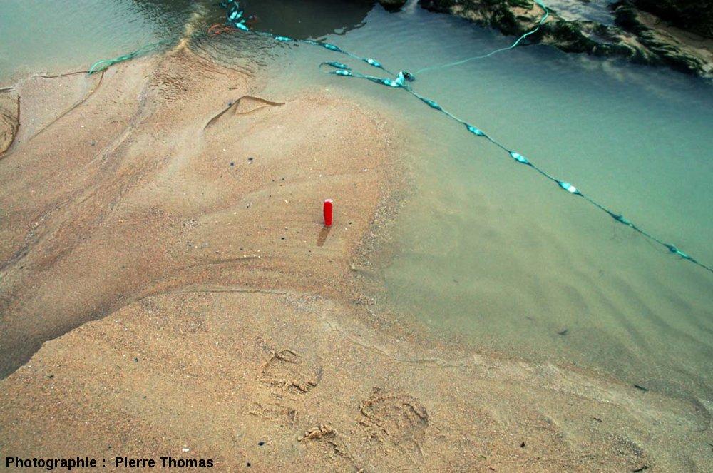Mini-delta progradant dans un trou d'eau temporaire sur une plage à marée basse, Cap Gris Nez (Pas de Calais)