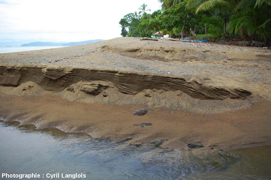 Stratifications dans une coupe de plage de la péninsule du Corcovado, Costa Rica