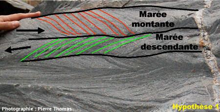 Schéma interprétatif du bloc de grès à stratifications en arêtes de poisson, vallée du Sheba Creek, région de Barberton (Afrique du Sud) : hypothèse 1