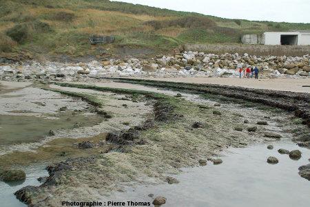 Terminaison péri-anticlinale sur la plage du Cap Gris-Nez (Pas de Calais)