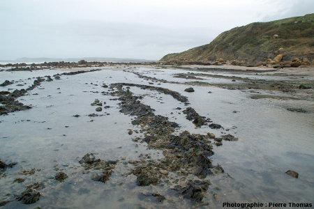 Terminaison péri-anticlinale à faible rayon de courbure sur la plage du Cap Gris-Nez (Pas de Calais)