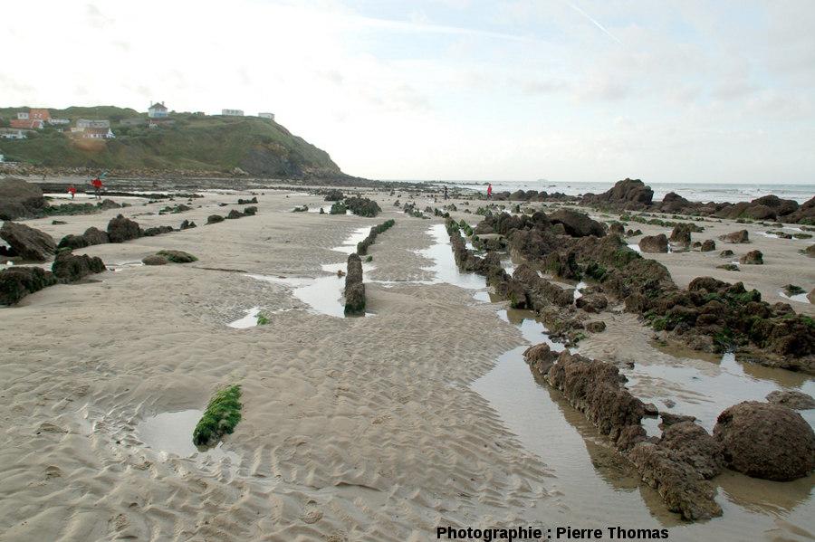 Zone sans charnières de plis visibles et où l'on ne voit que des couches verticales, plage du Cap Gris-Nez (Pas de Calais)