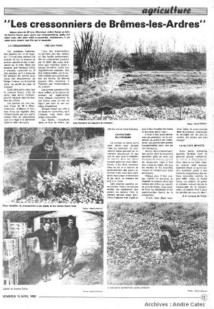 Article de presse (1988) relatant l'histoire des cressonnières et des puits artésiens de Brêmes, Pas de Calais
