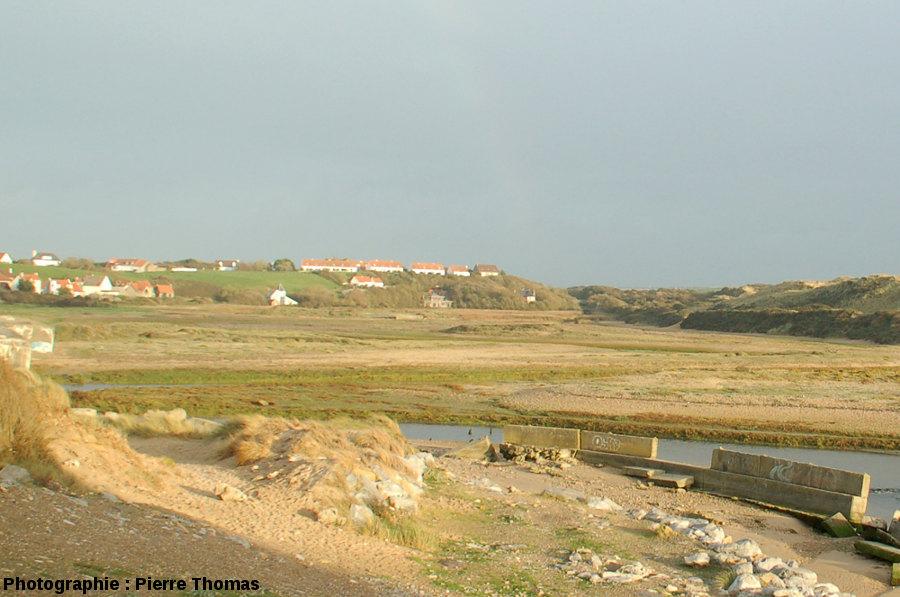 Le marécage amont où serpente la Slack (Pas de Calais)