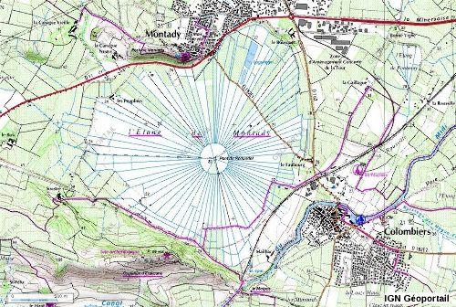 Extrait de la carte IGN montrant la disposition radiale des canaux drainant l'ancien étang de Montady (Hérault)